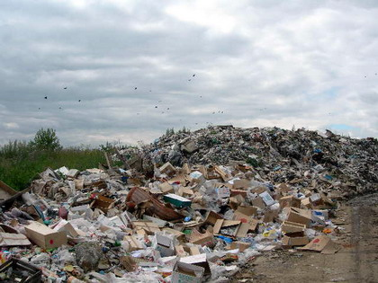 основные принципы охраны окружающей среды реферат